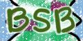 bsb.jpg